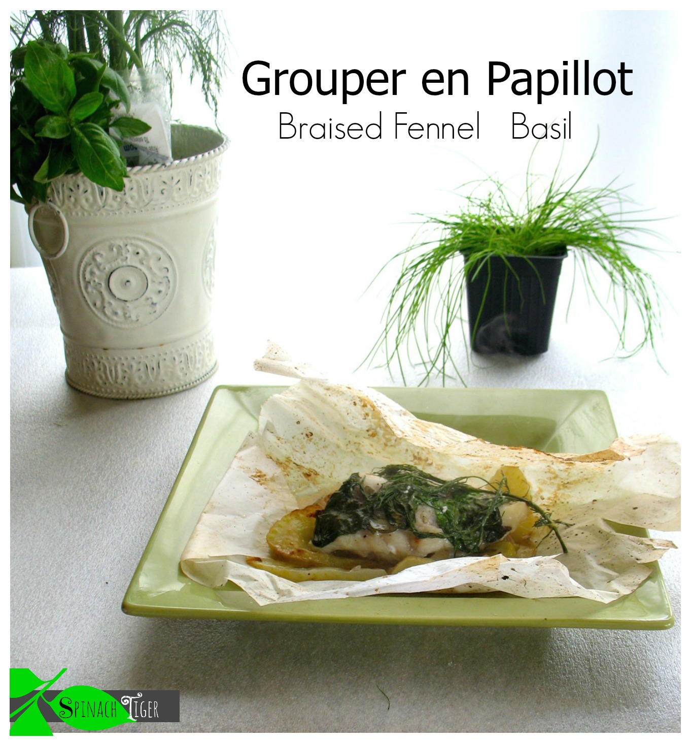 Grouper en papillote by angela roberts