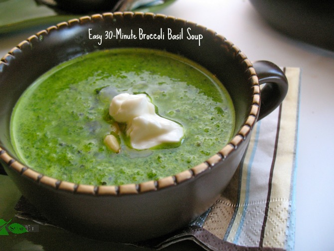 Easy Broccoli Basil Soup by Spinach Tiger