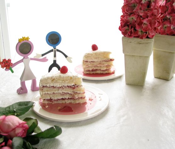 Raspberry Vanilla Party Cake by Angela Roberts