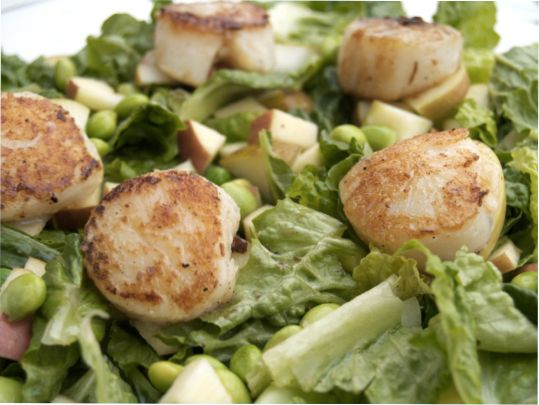 Ten Ways to Get Healthy with Integrity in 2010 and Seared Scallop Salad