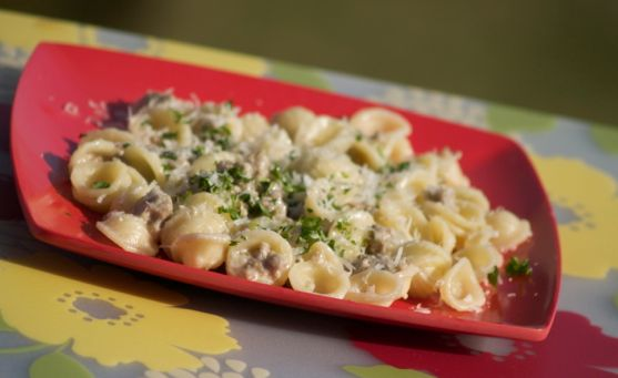 Sausage and Cream Sauce over Orecchiette