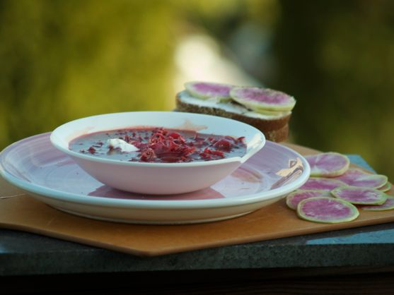 Borscht, Red Beet Soup by Angela Roberts