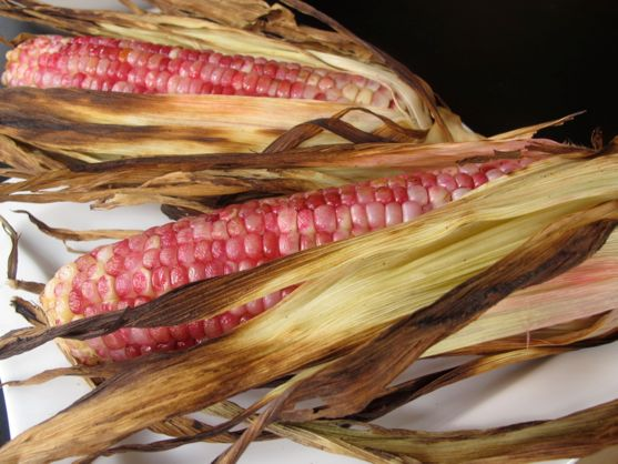 Pretty Red Corn You Can Actually Eat, AKA Red Posole