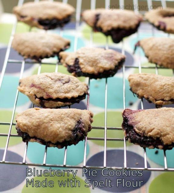 Blueberry Hand Pie with Spelt Pie Crust