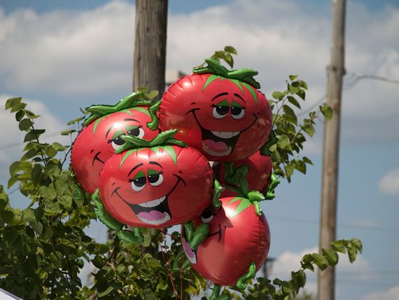 Tomato Art Festival via Angela Roberts