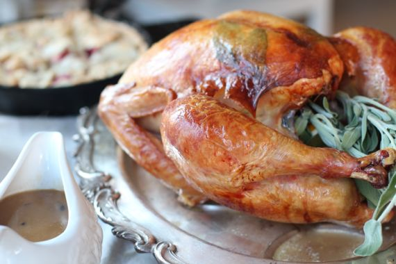 Cheesecloth Turkey by Angela Roberts
