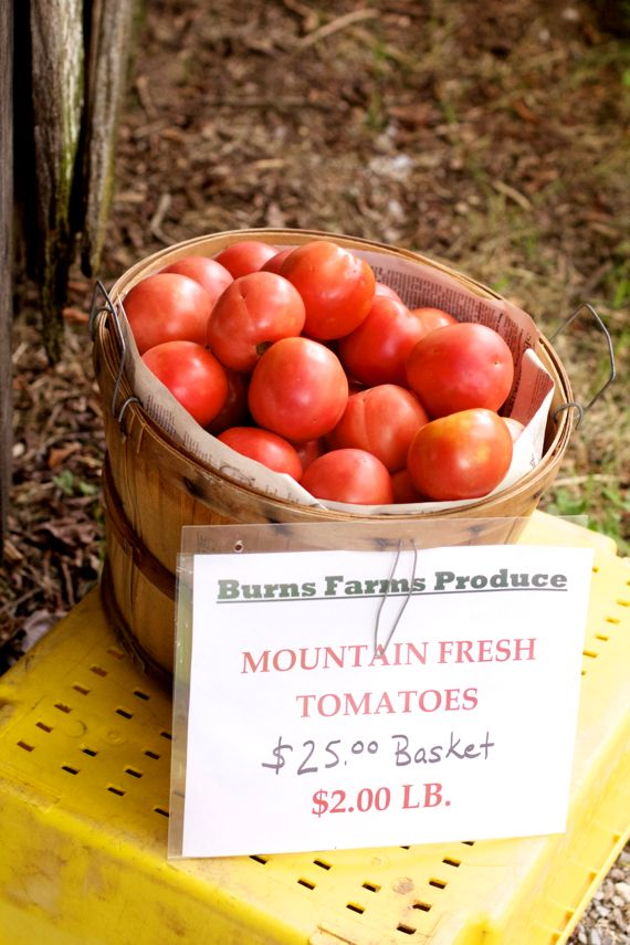 Mountain Fresh Tomatoes at Burns Farm Produce Stand Open for the Summer 17 by Angela Roberts
