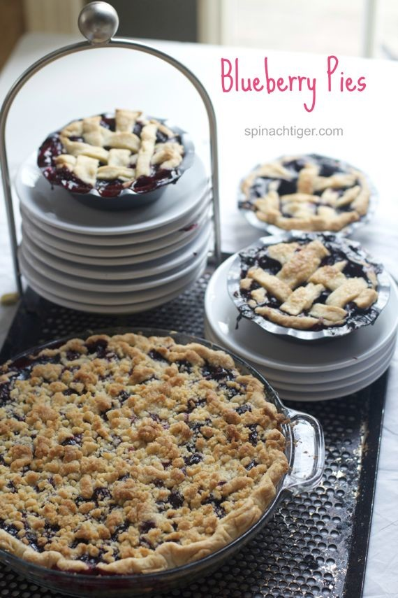World's Best Blueberry Crumb Pie Recipe