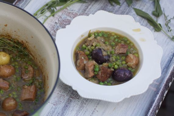 Veal Stew with Onion Sauce 2 by Angela Roberts