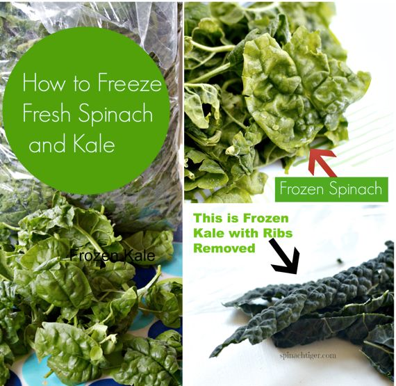 Joe's Special and How to Freeze Spinach and Kale by Angela Roberts