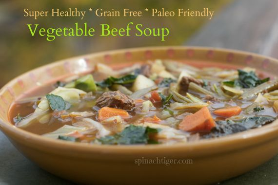 Weight Loss Paleo Soups - Vegetable Beef Soup Grain Free by Angela Roberts