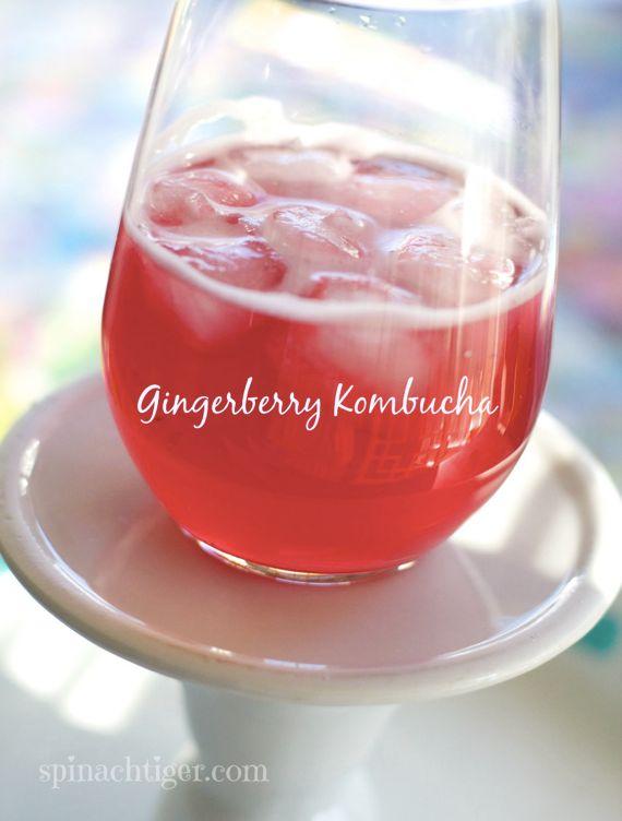 Gingerberry Kombucha Smoothie by Angela Roberts