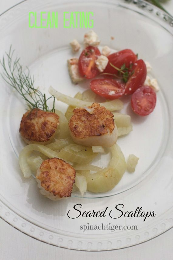 Seared Scallops with Braised Fennel: Fast, Easy, Tasty - Spinach Tiger