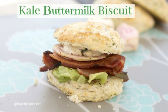 Kale Biscuit for National Kale Day by Spinach Tiger