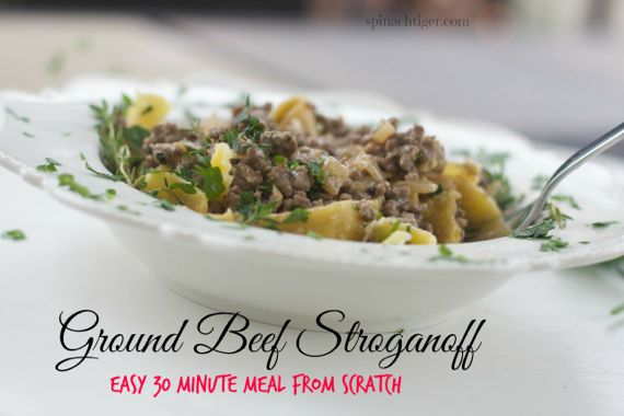 Ground Beef Stroganoff Recipe by Angela Roberts