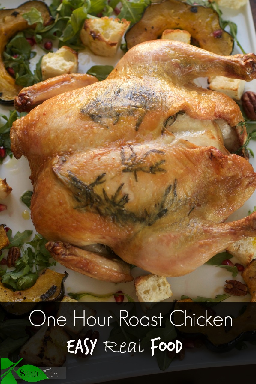 Zuni Cafe Chicken by angela roberts