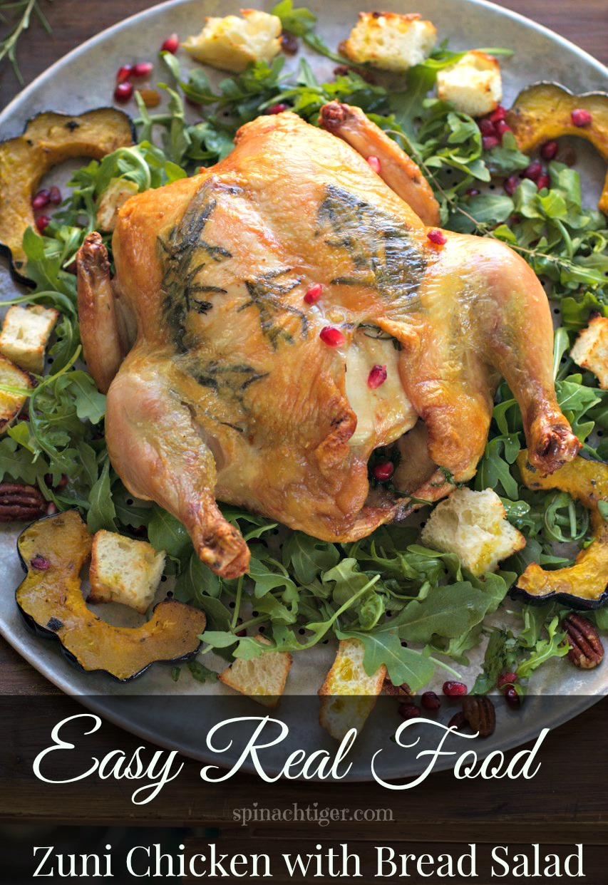 One Hour Zuni Cafe Chicken with Bread Salad recipe from legendary Judy Rogers. Roast Chicken in one hour with all the tips for the perfect chicken that I have made at least 200 times. #spinachtiger #roastchicken #easydinner #breadsalad via @angelaroberts