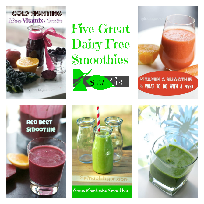 Five Dairy Free smoothies by ANgela roberts