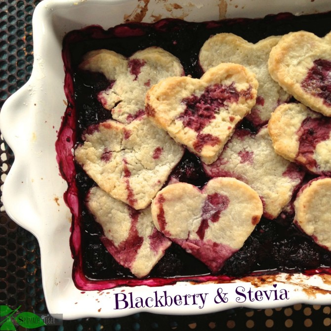 Blackberry Pie with Stevia by Angela Roberts