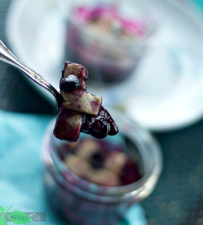 berry recipes with stevia by angela roberts