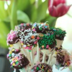 Marshmallow Bouquets by angela Roberts