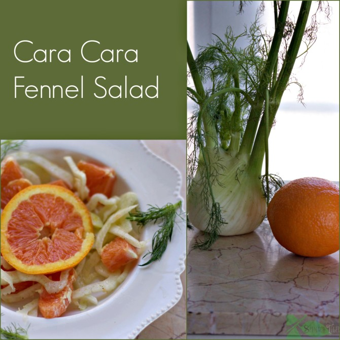 Cara Cara Fennel Salad by Angela Roberts