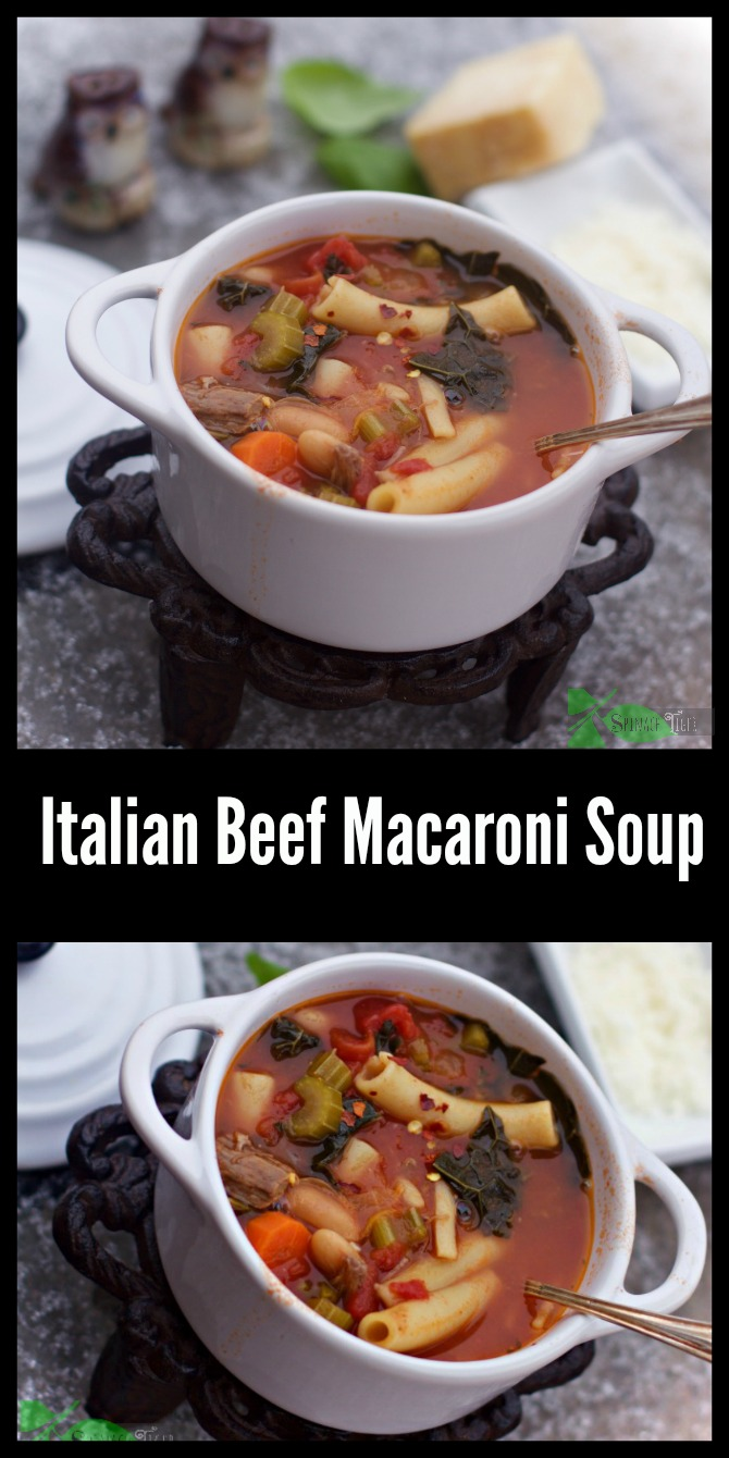 Italian Beef Macaroni Soup Recipe from Spinach Tiger