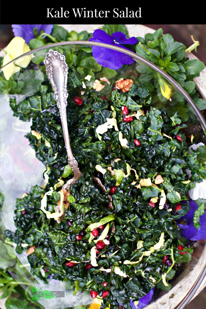 Kale Winter Salad: Easy Healthy Recipes from Spinach Tiger