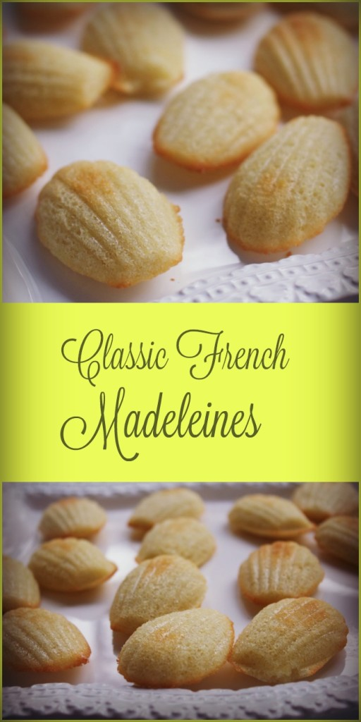 Christmas Cookies: Classic French Madeleines from Spinach Tiger