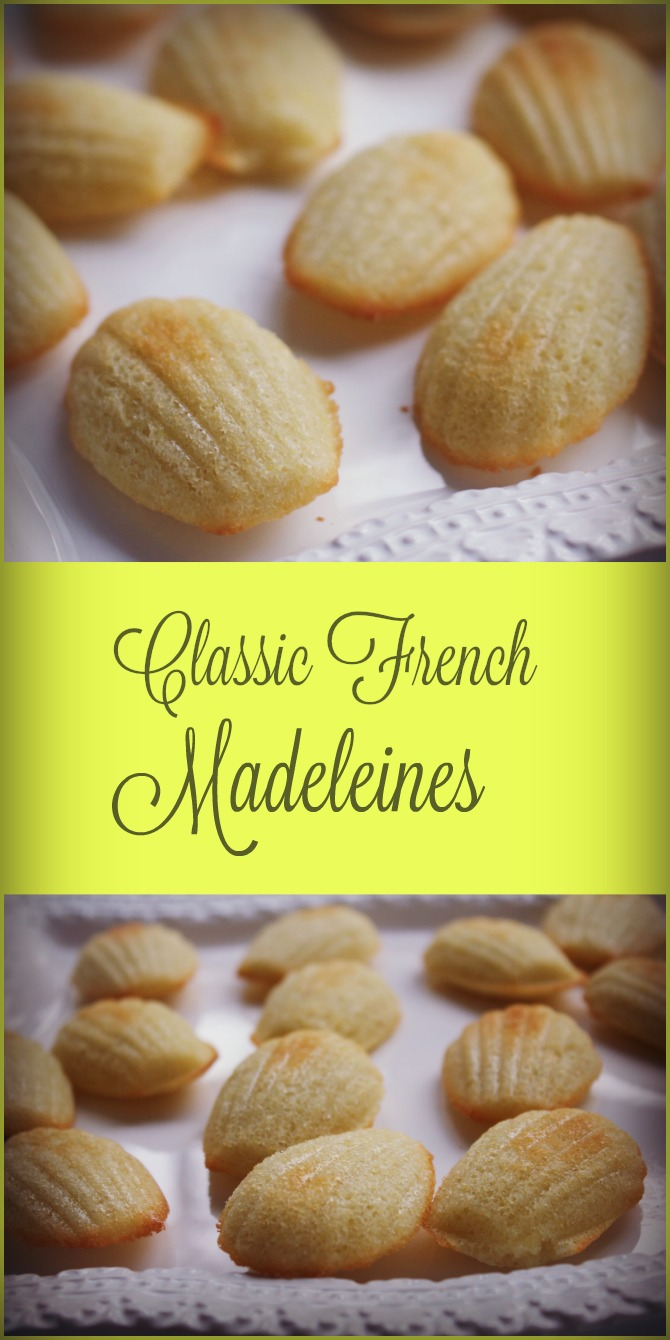 Classic French Madeleines Cookies and Book Review for Madeleines ...