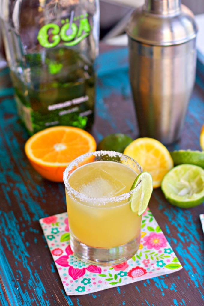 Low Carb Mexican Recipes -Fresh Citrus Best Margarita from Spinach Tiger