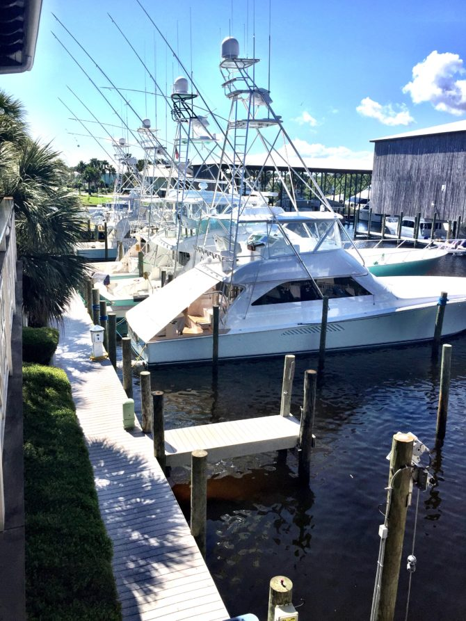 View at Fishers in Orange Beach by Angela Roberts