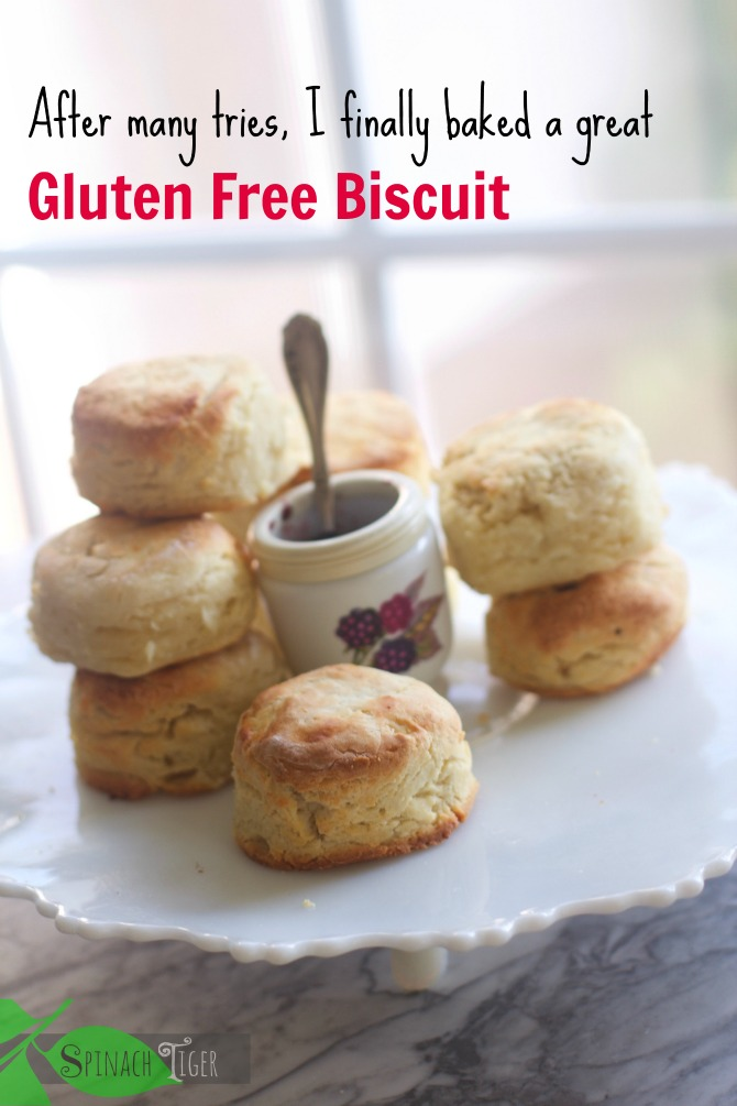 Secret to good a Gluten Free Biscuit by Angela Roberts