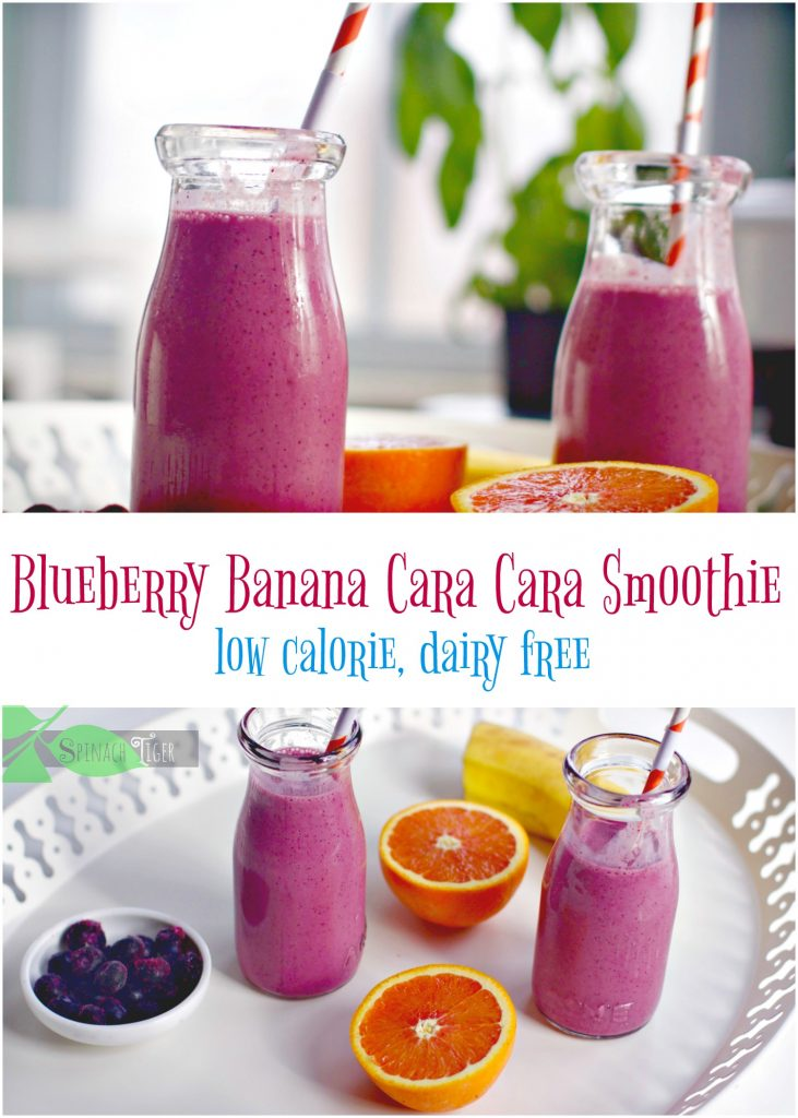 Nutrient Dense Blueberry Banana Smoothie from Spinach Tiger