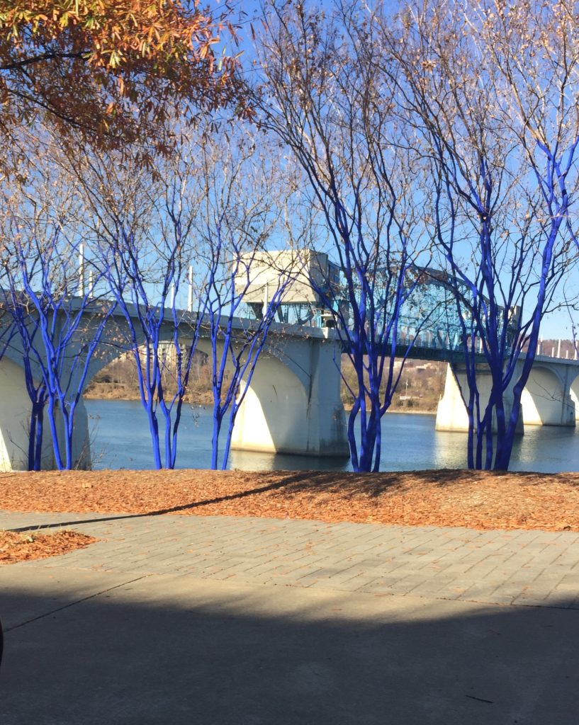 Blue Trees of Chattanooga