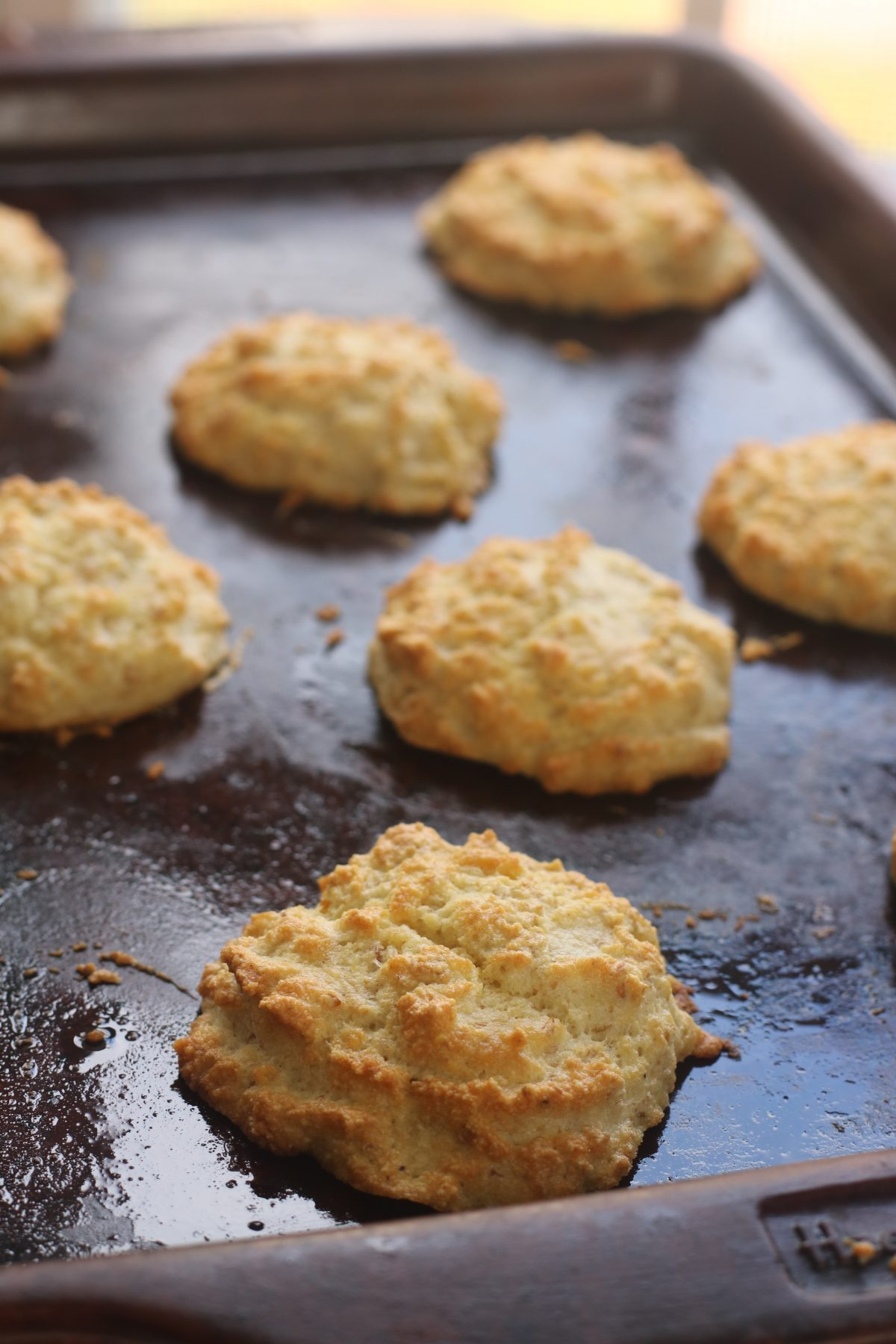 How to Make Paleo Keto Southern Grain Free Biscuits from Spinach Tiger
