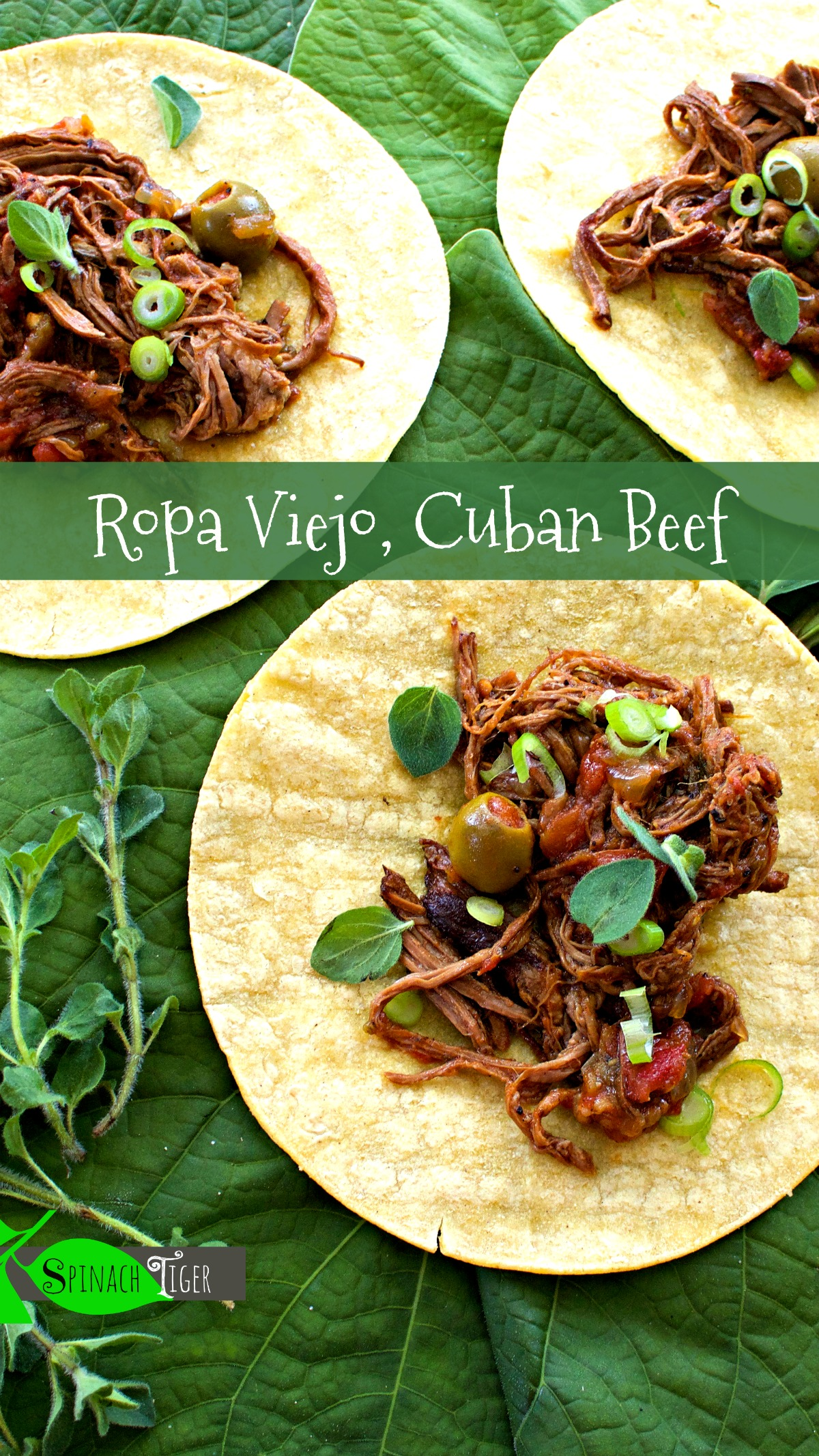 How to Make Ropa Viejo, Cuban Shredded Beef with Corn Tortillas from Spinach Tiger