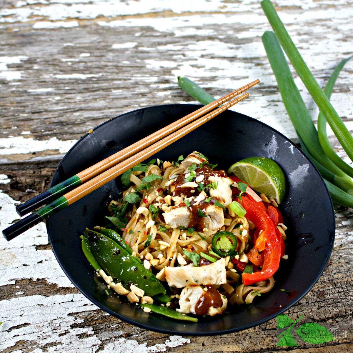 Gluten Free Thai Peanut Noodles with chicken Skewers from Spinach Tiger