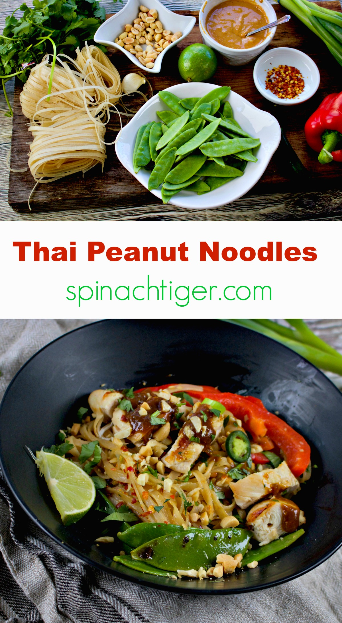 Best Thai Peanut Noodles with Grilled chicken Skewers from Spinach Tiger