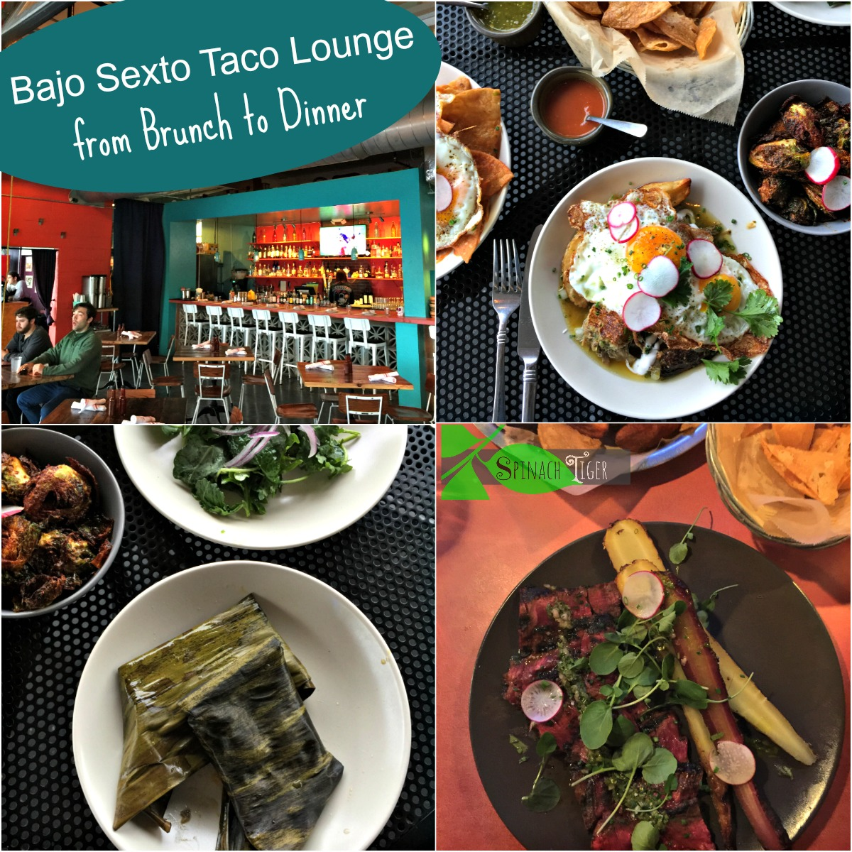 Bajo Sexto Taco Lounge from Spinach Tiger