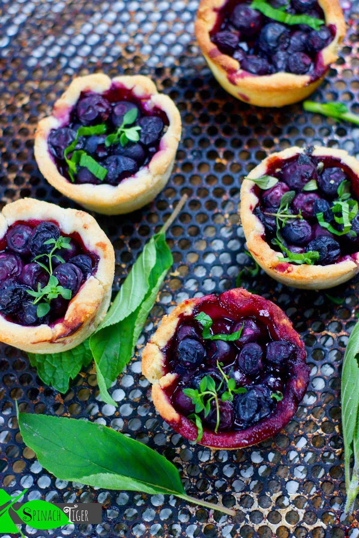 Blueberry Mini Pie Recipes from Spinach Tiger