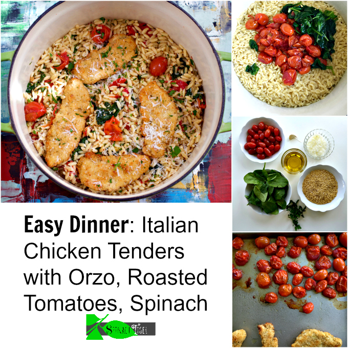Italian Chicken Orzo Pasta Recipe from Spinach Tiger #chickendinner #easydinner #Italianfood #orzo