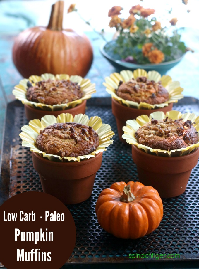 Pumpkin Dessert Recipes Pumpkin Muffins Low Carb