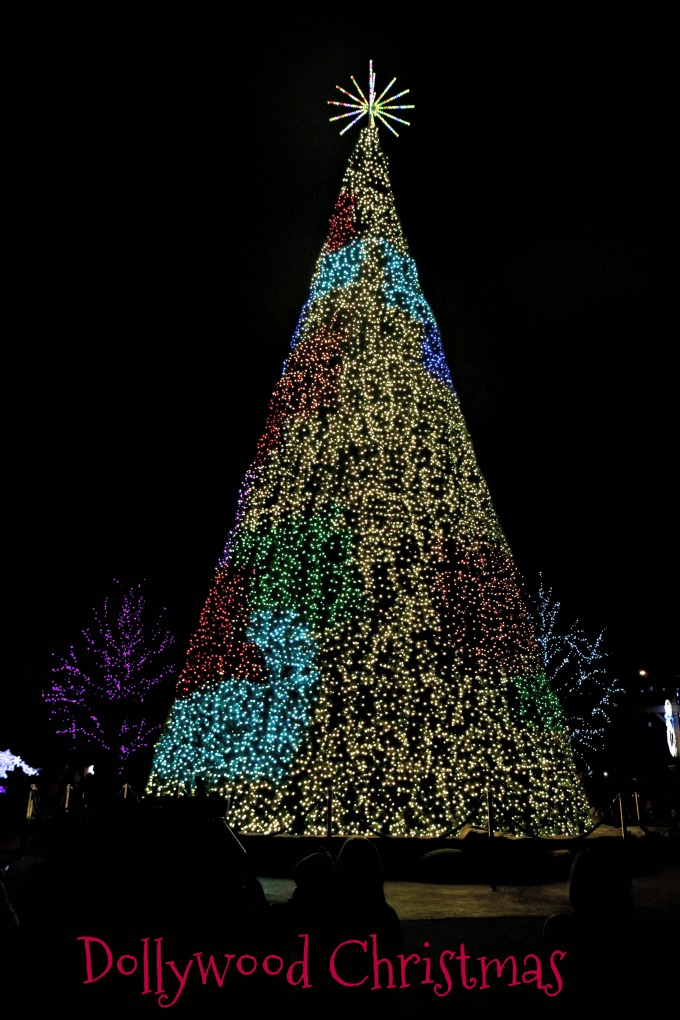 Christmas Trees at Christmas at Dollywood from Spinach Tiger