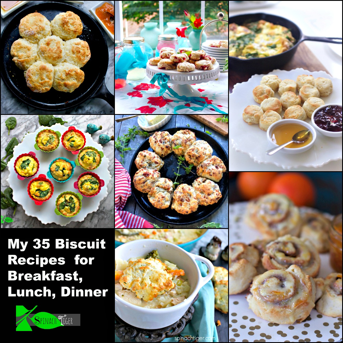 Southern Biscuit Recipes from Spinach Tiger